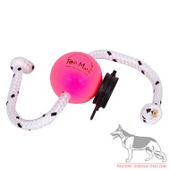 Fun Ball Puppy Super Soft rosa diam.5,8 cm con clip nera e corda